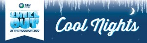 CoolNights_HeaderTile