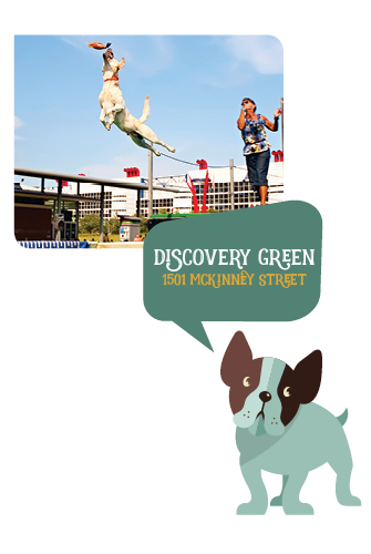 Doggie_DiscoveryGreen